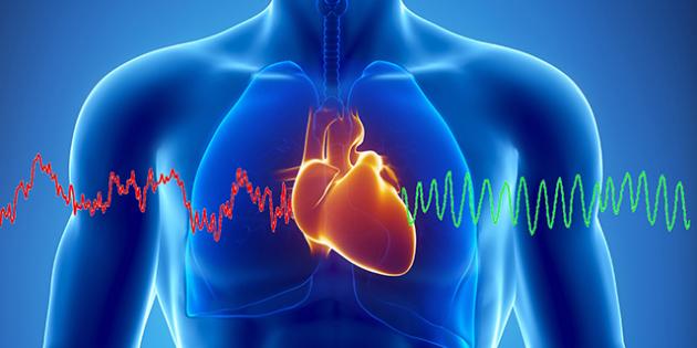 HeartMath-Electromagnetic-02-630x315 (630x315, 152Kb)
