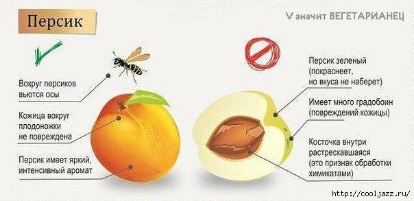 как выбираь овощи и фрукты1 (604x293, 96Kb)