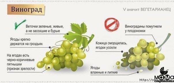 как выбираь овощи и фрукты4 (604x288, 96Kb)