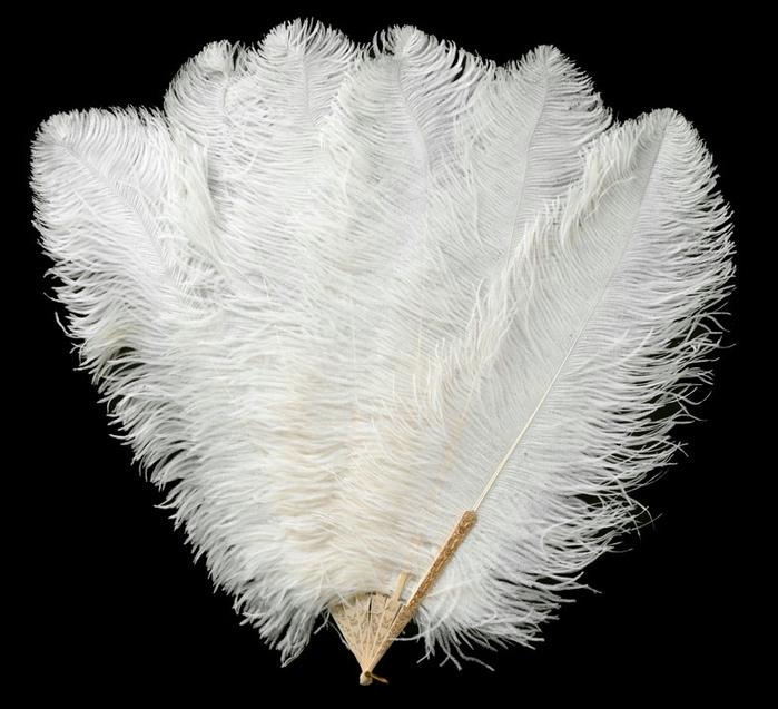 Страусиные перья своими руками