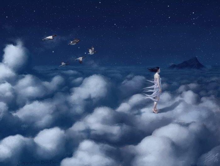 1331328757_thienbao-lost_in_the_clouds_by_thienbao (700x529, 39Kb)