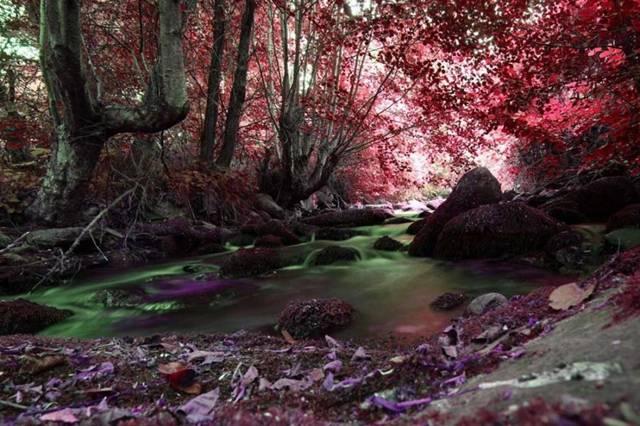LuminescentStream (640x426, 61Kb)