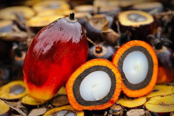 Почему пальмовое масло дешевле всех остальных и почему его хотят запретить
