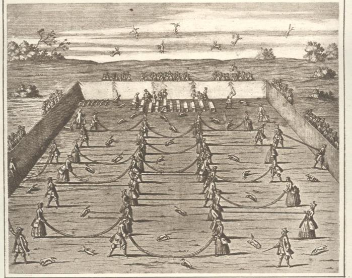 средневековая игра бросание лисицы