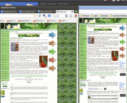 В Mozilla и Chromium в блог (445x359, 226Kb)
