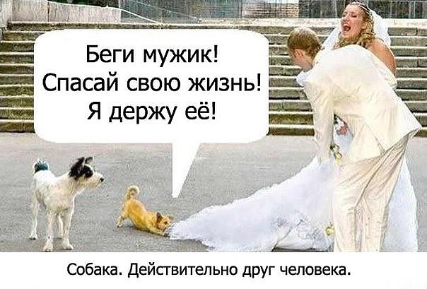 3416556_image_1_ (604x409, 68Kb)