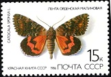 YtSU 5288 ������� ����� 1986 Butterflies ����� ��������� ��������� Dark creamson underwing (Catocala sponsa) (162x113, 12Kb)