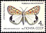 YtSU 5285 ������� ����� 1986 Butterflies ��������� �������������� Crimson-speckled moth (Utetheisa pulchella (161x115, 14Kb)