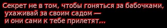 cooltext177923823708845 (648x111, 55Kb)