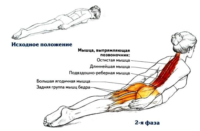 Упражнение (650x427, 52Kb)