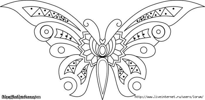 b5a115b24d1d.jpglorum бабочка