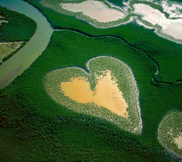 heart-shaped_nature__(4) (600x534, 148Kb)