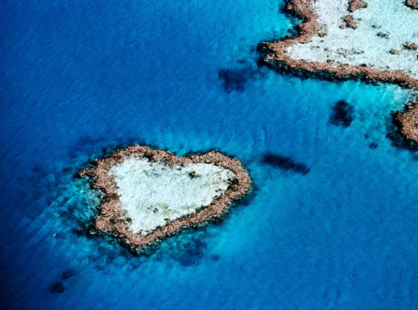 heart-shaped_nature__(15) (600x446, 93Kb)
