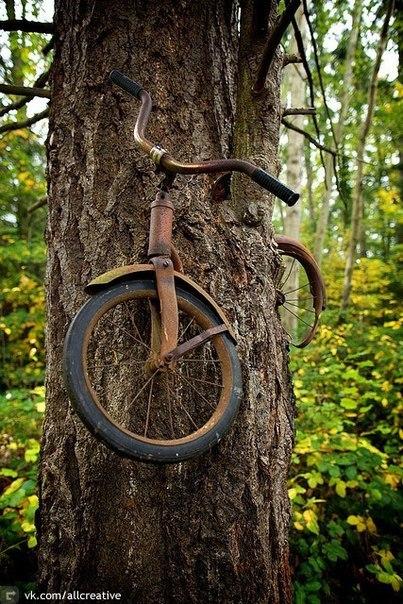велосипед (403x604, 109Kb)