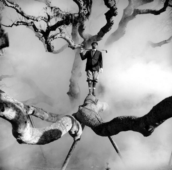 Лучшие фотографии в стиле сюрреализм от Родни Смита 5 (600x591, 71Kb)