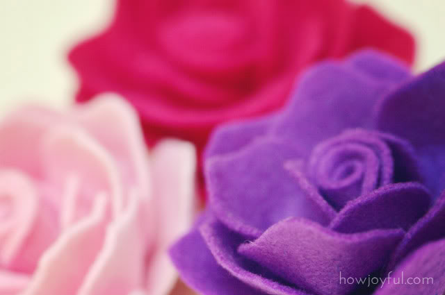 rose-flower-7 (640x425, 24Kb)