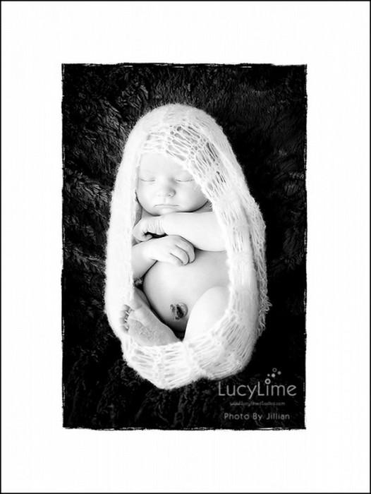 Профессиональные фото детей от студии Lucy Lime 63 (526x700, 60Kb)