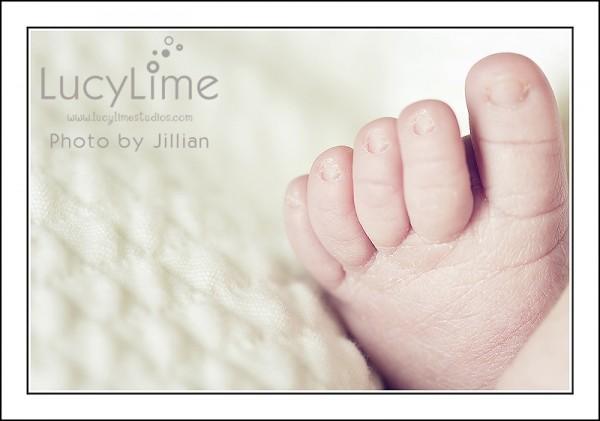 Профессиональные фото детей от студии Lucy Lime 137 (600x421, 38Kb)
