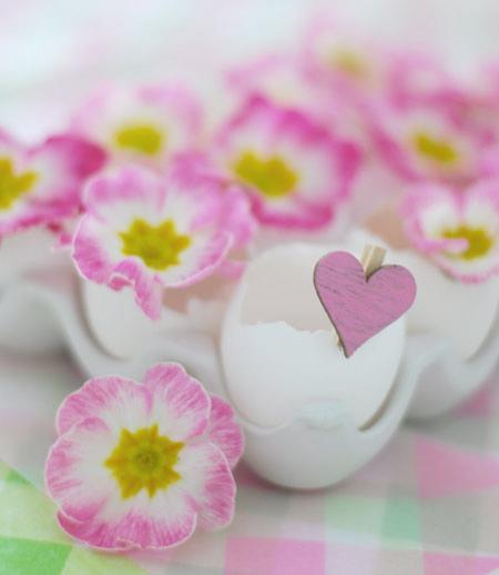 вазы из яичной скорлупы с первоцветами (450x518, 108Kb)