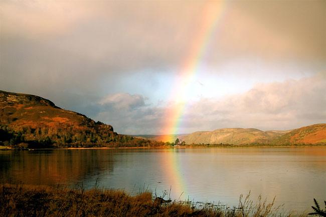 Rainbow_8 (650x433, 50Kb)
