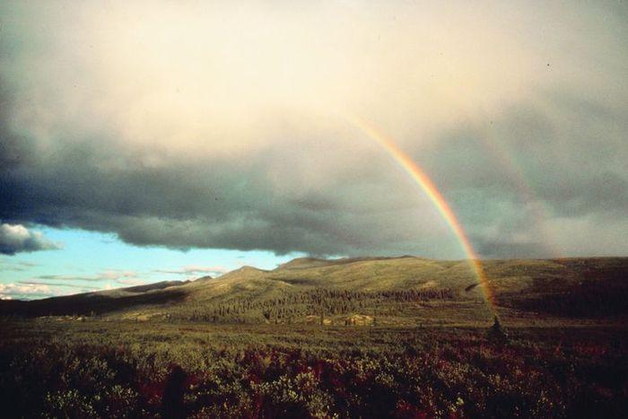 Rainbow_15 (700x467, 40Kb)