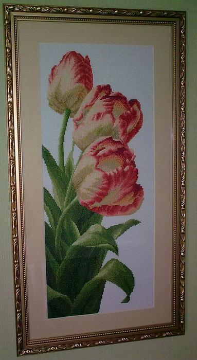 Три тюльпана. Вышивка крестом.