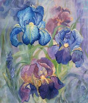 85 QS Iris (295x347, 151Kb)