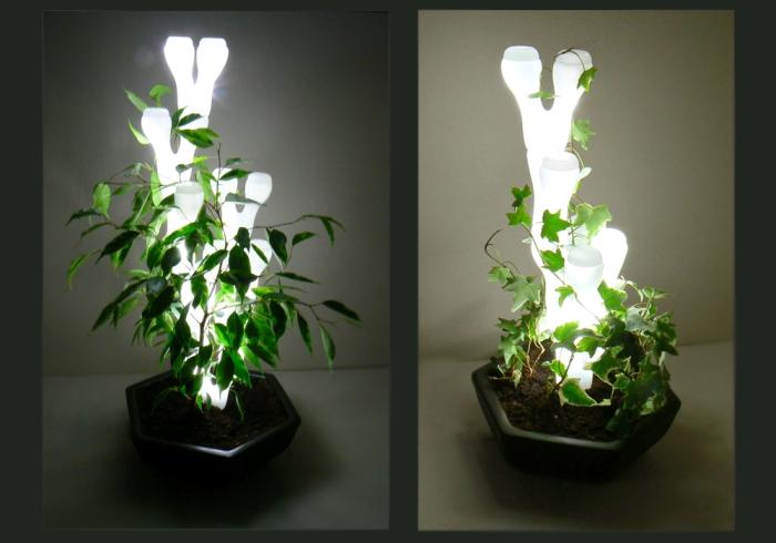 лампа4 (700x490, 168Kb)