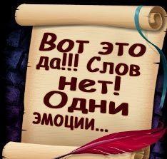 84564036_large_51571153_7_0 (234x223, 14Kb)