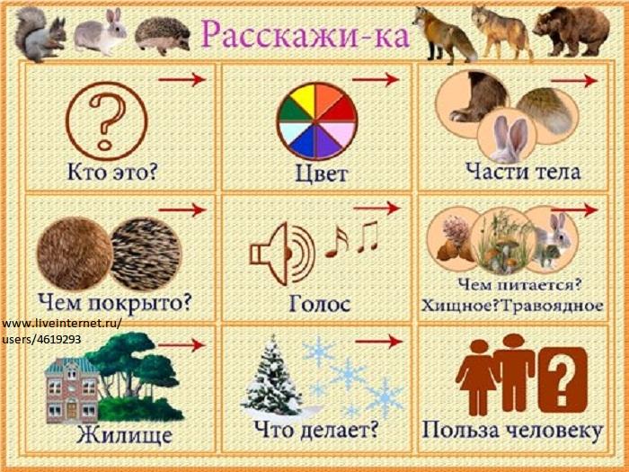 ...медведь, медведица, медвежонок, волк, волчица, волчонок, заяц, зайчиха, зайчонок, лиса, лисица, лис, лисенок, нора...