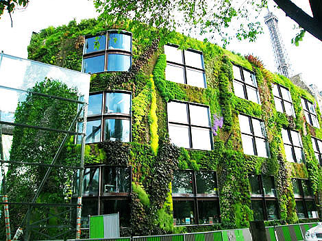 Вертикальные сады Патрика Бланка