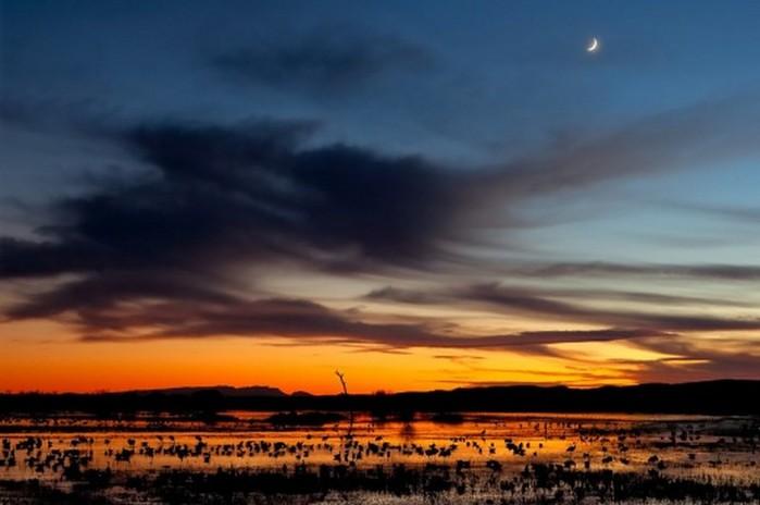 Как фотографировать ночное небо - полезные советы и примеры 13 (700x464, 54Kb)