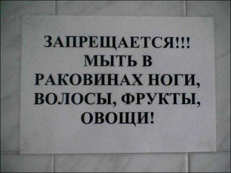 3821971_1299253386_1276037519_8 (450x337, 23Kb)