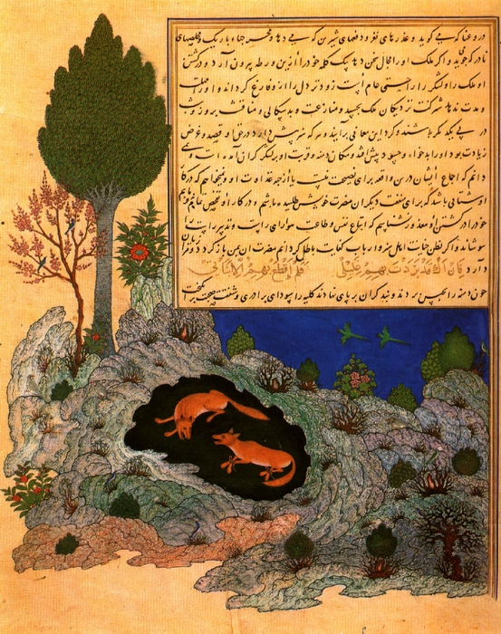Min - Kalila visits the captive Dimna (Herat 1430) (553x700, 412Kb)