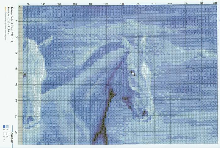 koni (5) (700x472, 489Kb)