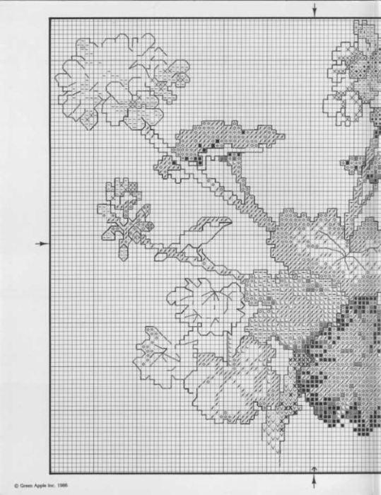 Geranium I 1 (539x700, 77Kb)