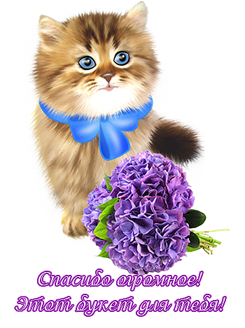 http://img1.liveinternet.ru/images/attach/c/5/85/132/85132173_645.png