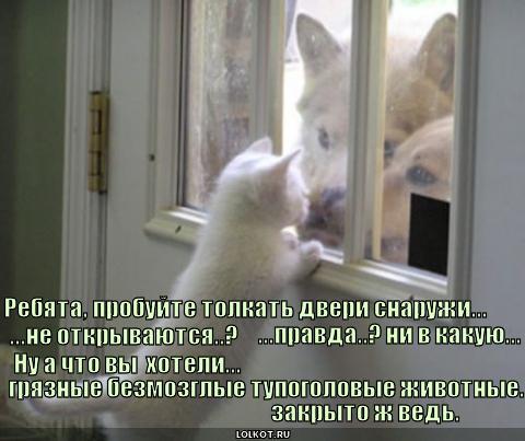 dveri_1309462948 (480x403, 32Kb)