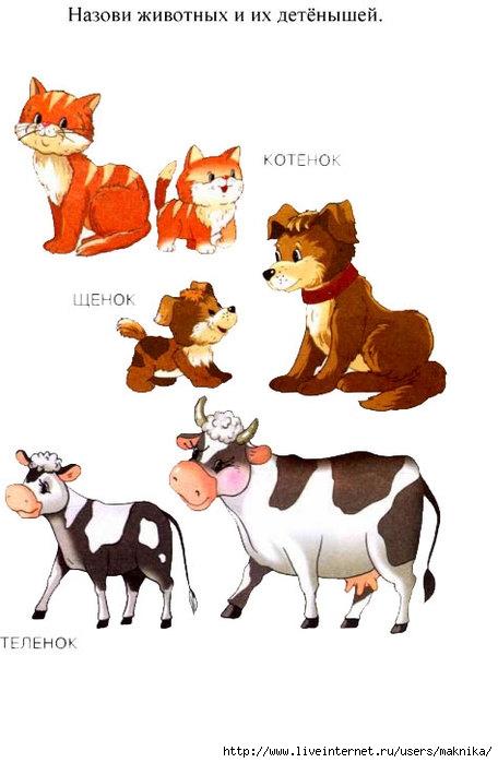 Животные с детёнышами рисунки