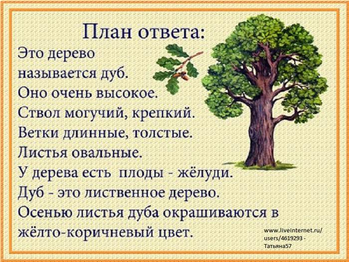 деревья урала