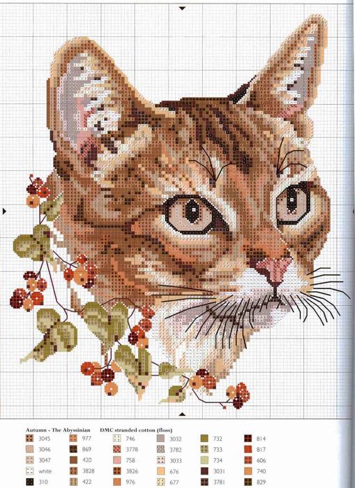 Залито:13.2.2012 18:50.  Автор:Admin Скачек970: Комментариев.  Схема бисероплетения бисероплетение схемы кошек.