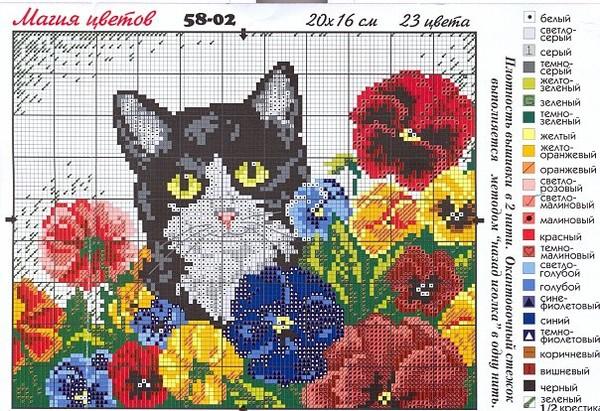 Схемы цветов для вышивки мулине 804