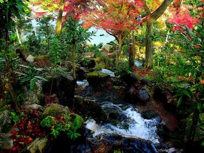 Японский сад фото 11 (700x525, 147Kb)