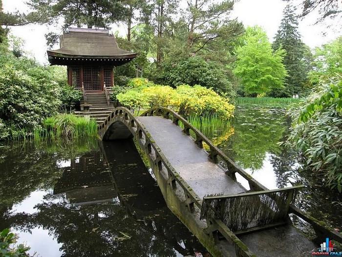 Японский сад фото 26 (700x525, 172Kb)