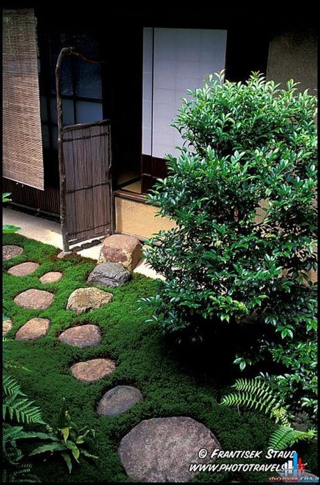 Японский сад фото 34 (462x700, 425Kb)