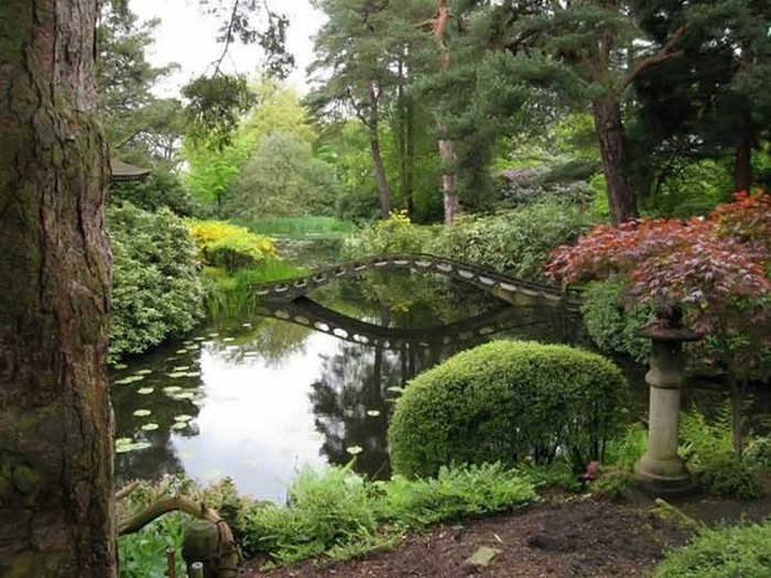 Японский сад фото 45 (700x525, 123Kb)