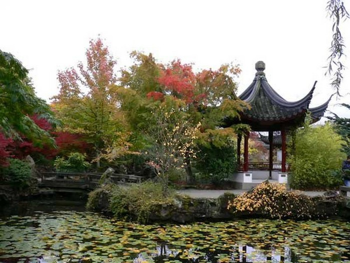 Японский сад фото 73 (700x525, 110Kb)