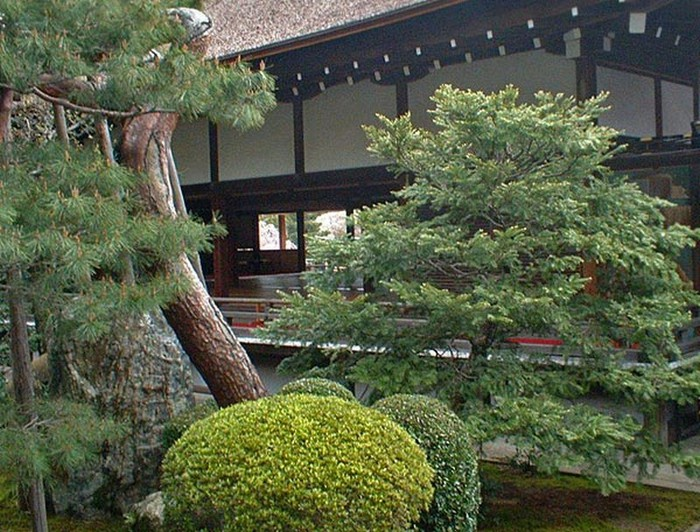 Японский сад фото 79 (700x532, 147Kb)