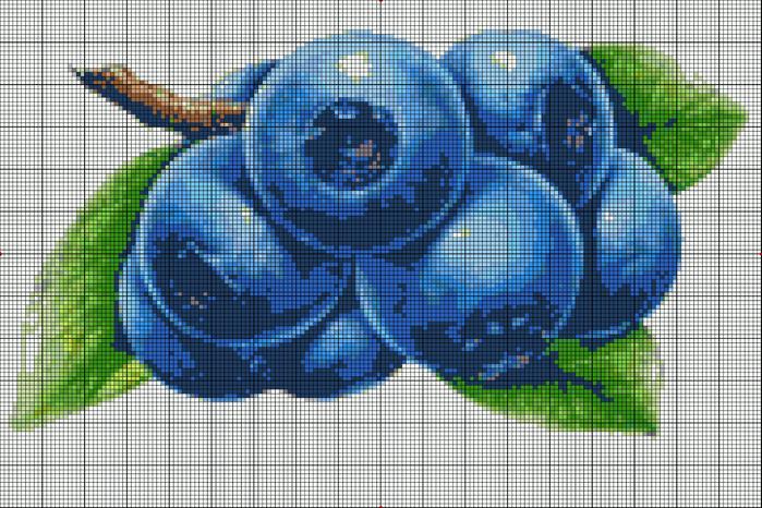 черника.bmp (700x466, 531Kb)