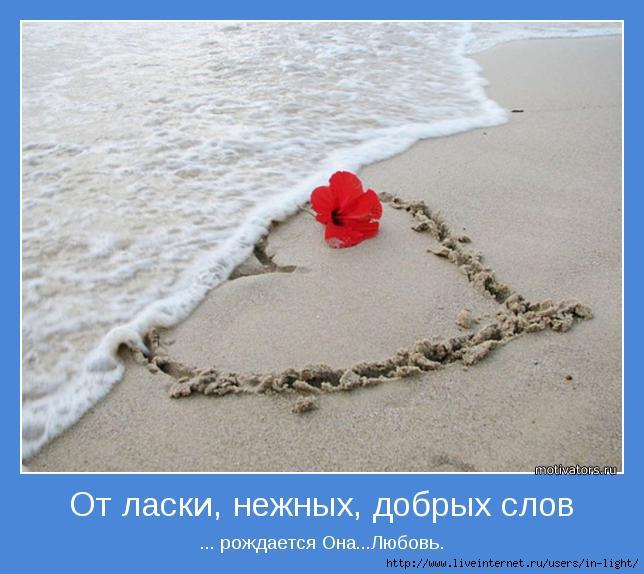 мотиватор любовь позитив 5 (644x574, 150Kb)
